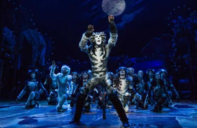 Cats at Starlight Theatre